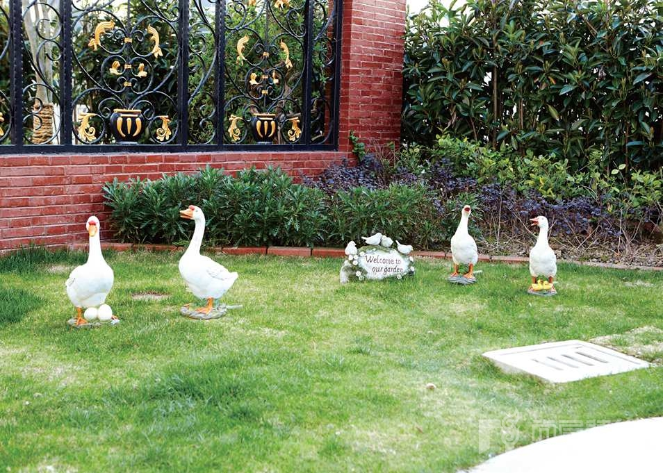 银丽高尔夫别墅装修业主院子中的小鸭子雕塑