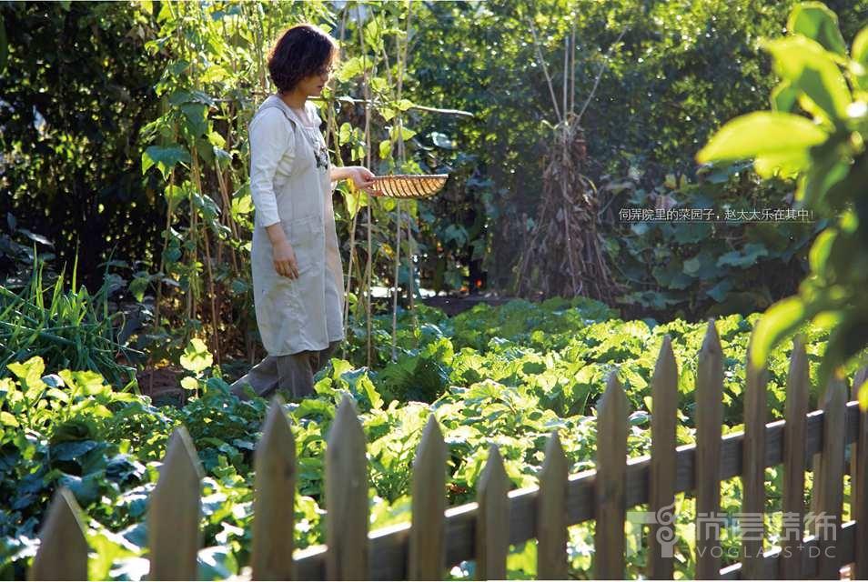 静之湖别墅业主的菜园子